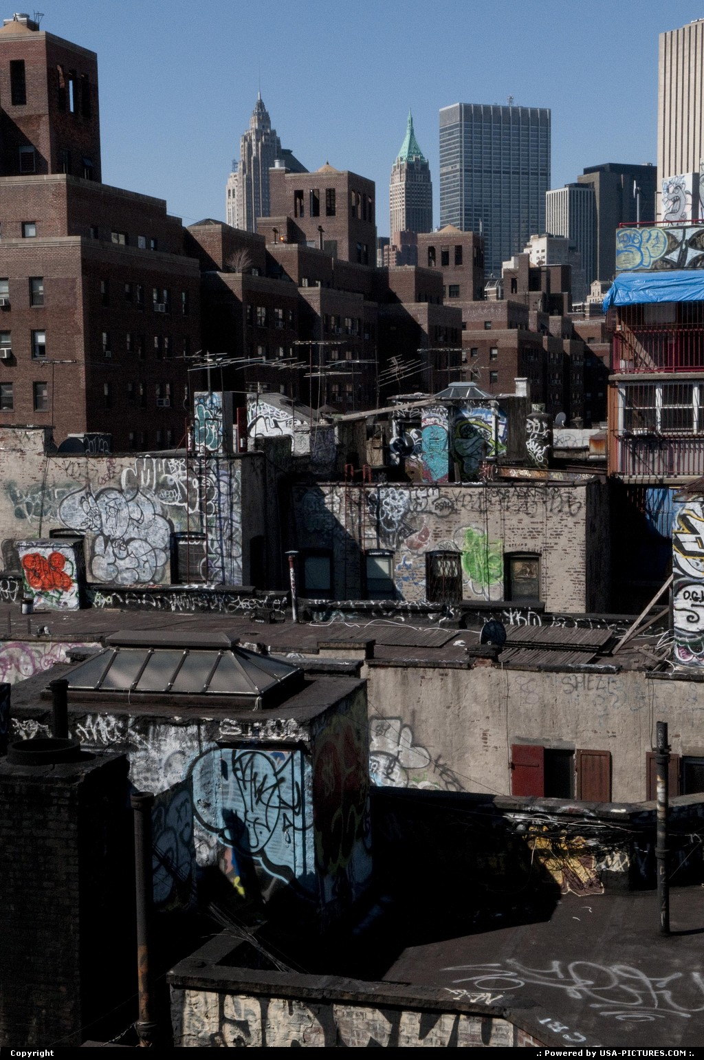 Picture by USA Picture Visitor:New yorkNew-yorkChinatown