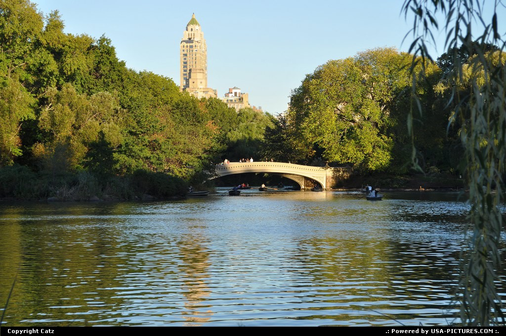 Picture by Catz: New york New-york   Central Park,New York