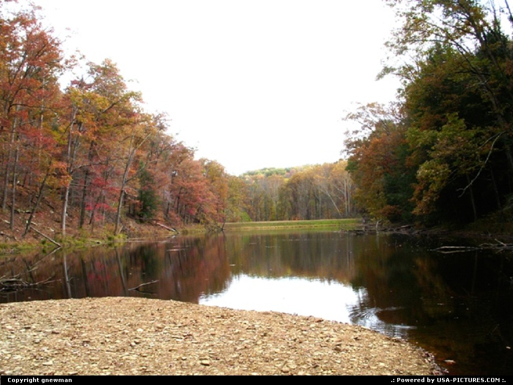 Picture by gnewman: West Portsmouth Ohio   water, lake, autumn, fall, trees, leaves