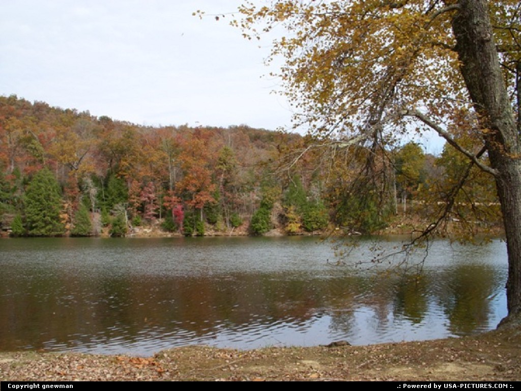 Picture by gnewman: West Portsmouth Ohio   water, lake, trees, fall, autumn