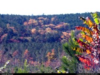 Oklahoma, Fall Foliage in the Kiamichi Mountains of Southeast Oklahoma