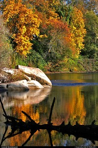 Oregon, Amazing colorful fall colors reflected on the surface of the Rogue River in Grants Pass, Oregon.