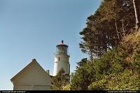 Oregon, The Heceta lighthouse in the background. Lighthouse's keepers house, now a museum