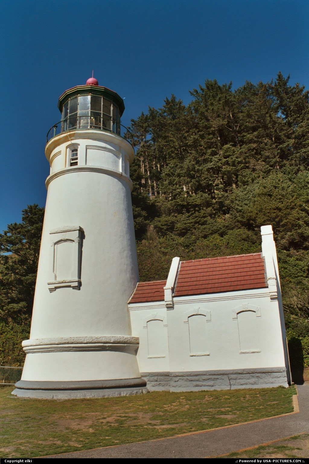 Picture by elki:YachatsOregonlighthouse, forest
