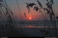 South-carolina, This photo was taken early one morning behind the seaoats at Hunting Island State Park