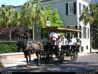 Photo by Bernie | Charleston  horse, wagon, visiting