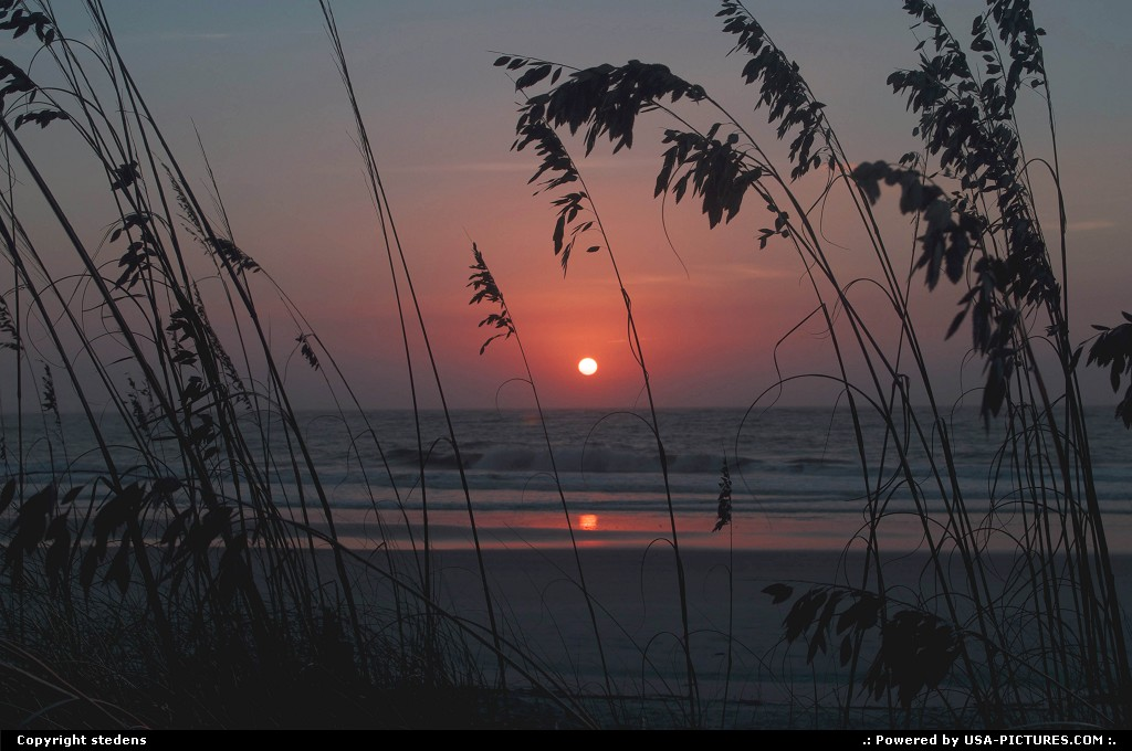 Picture by stedens: Beaufort South-carolina