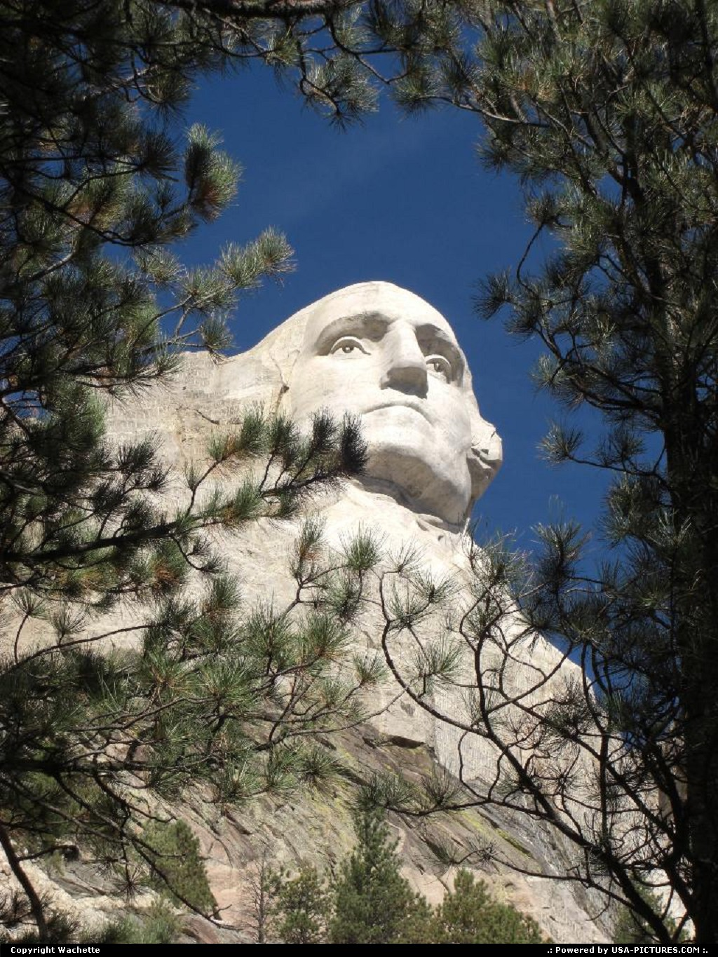 Picture by Wachette: Not in a city South-dakota   mont rushmore