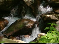 , Gatlinburg, TN,