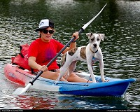 Photo by LoneStarMike | Austin  kayak, dog