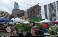 Austin's Farmers Market at Republic Squaare with nearby construction.