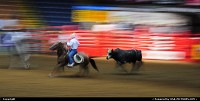 Texas rodeo, you better run your horse as a real cowboys to avoid being kicked by this furious bull !!