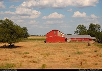 Photo by LoneStarMike | Not in a City  rural, farm, barn, cow