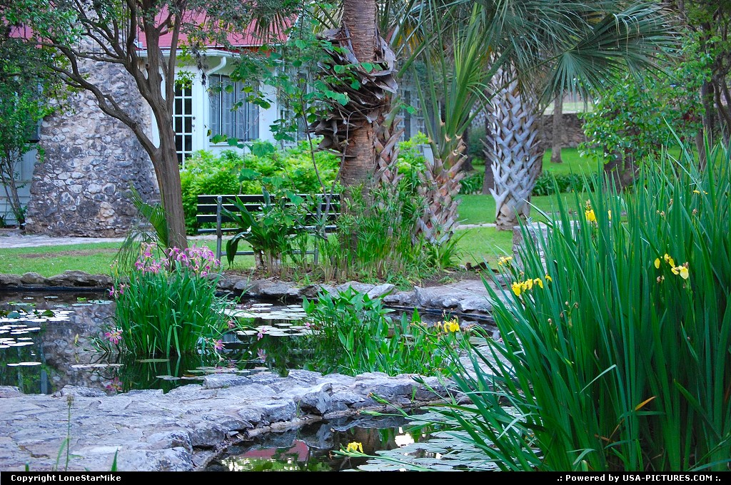 Picture by LoneStarMike:AustinTexaspark, garden
