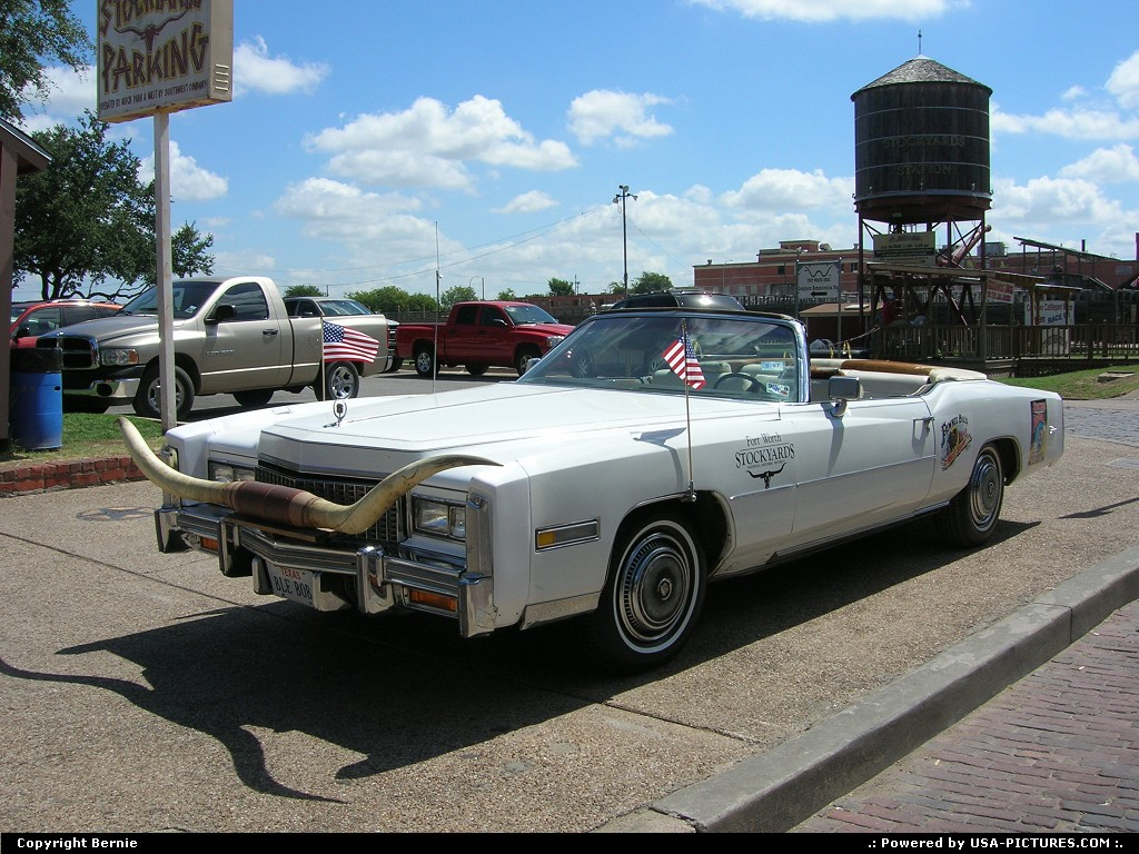 Picture by Bernie: Fort Worth Texas   car