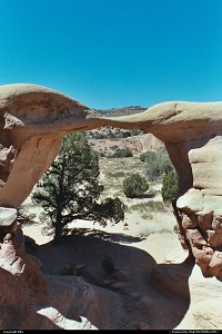 Devil's garden, dans le Escalante Grand Staircase National Monument. C'est également la route vers Hole in the Rock