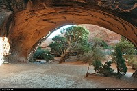 Photo by elki |  Arches arche