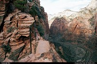 Photo by elki |  Zion hike, extreme hike