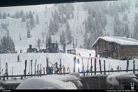 Alta : View from Wildcat Base during a snowy day, Winter 2001