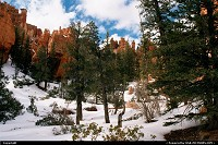 Those were the days ... The very beginning of decent Digital Cameras, back in 2001. Here at the end of the Winter in Bryce National park.