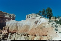 Bryce Canyon : Hiking in the canyon. A hike on one of the numerous trails within the park is a must!