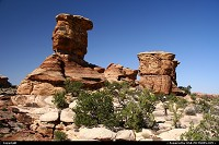 Canyonlands : The Needles, Canyonlands National Park.