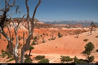 , Not in a City, UT, Bryce Canyon NP