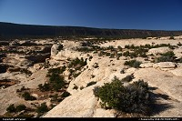 Not in a City : Natural Bridges National Monument.