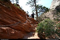Zion National Park. Angels Landing trail.