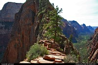 Zion National Park. Angels Landing.