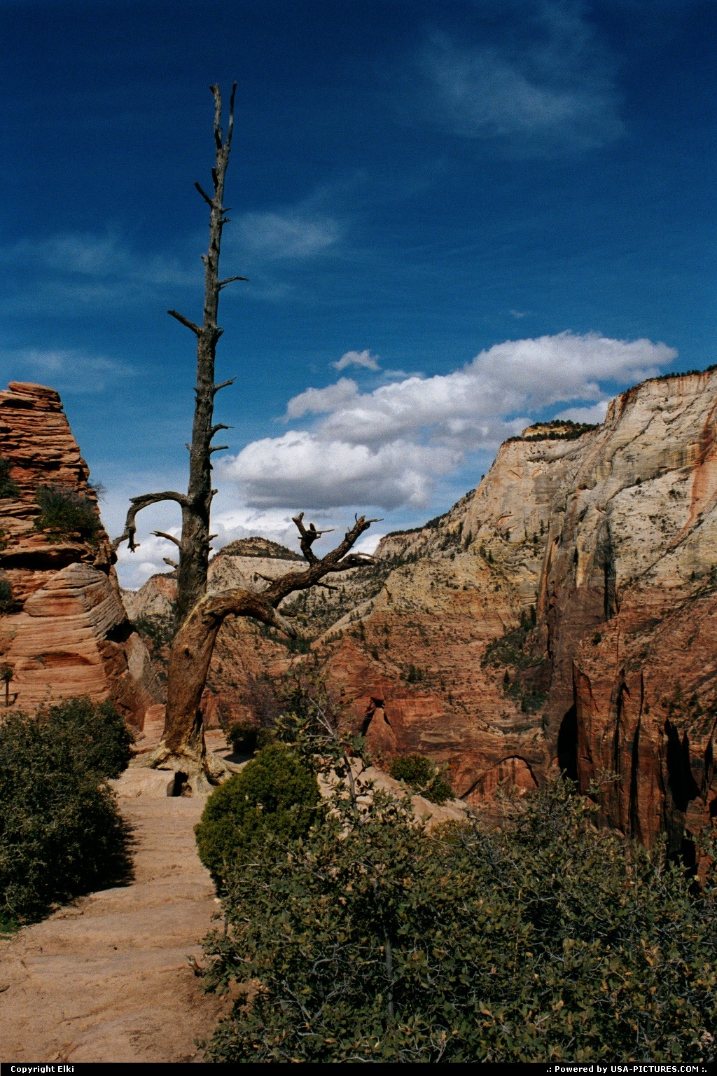 Picture by elki:  Utah Zion Angels Landing hike, extreme hike
