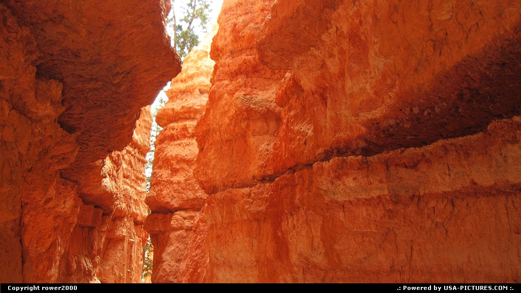 Picture by rower2000:  Utah Bryce Canyon