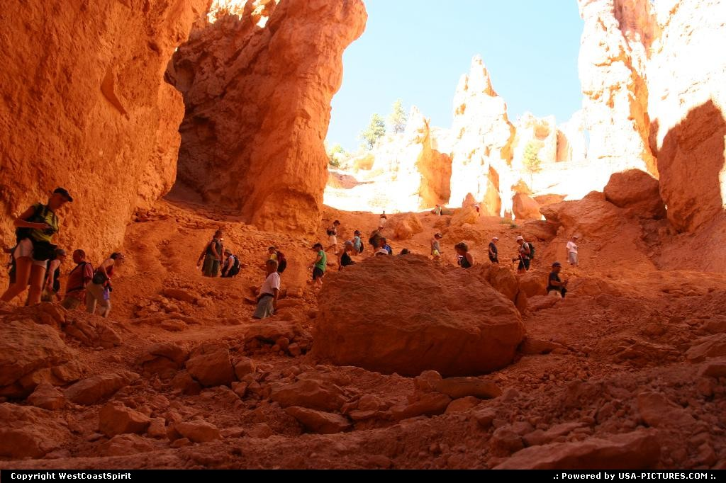 Picture by WestCoastSpirit:  Utah Bryce Canyon  lemmings, hike, canyon