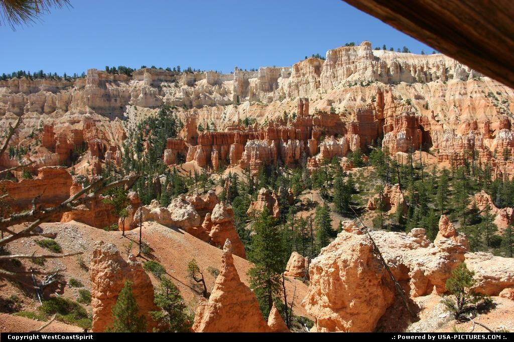 Picture by WestCoastSpirit:UtahBryce Canyonhike, trails, canyon