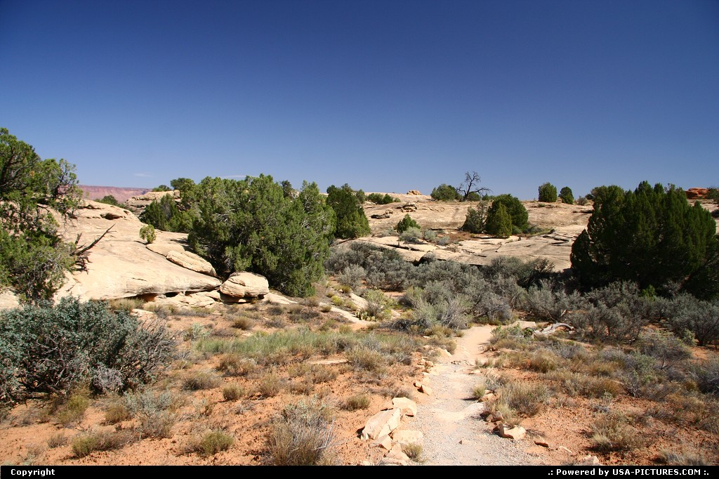 Picture by airtrainer:  Utah Canyonlands  the needles, canyonlands