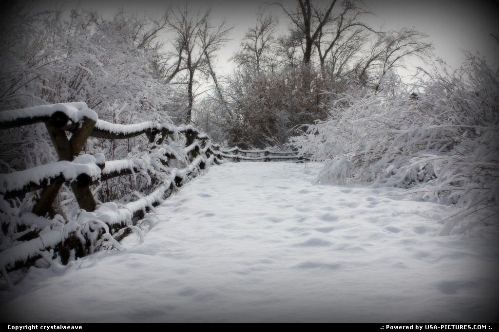 Picture by crystalweave:Not in a CityUtahsnowy fence