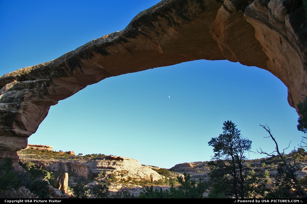 Picture by USA Picture Visitor:Not in a CityUtahnatural bridges, trail