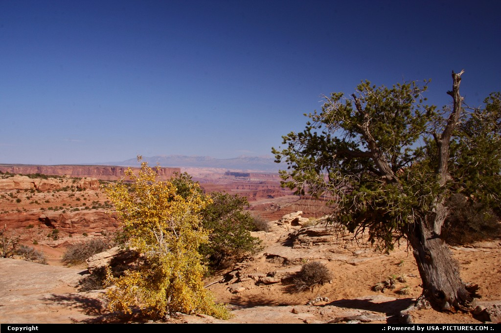 Picture by USA Picture Visitor:Not in a CityUtahcanyonlands