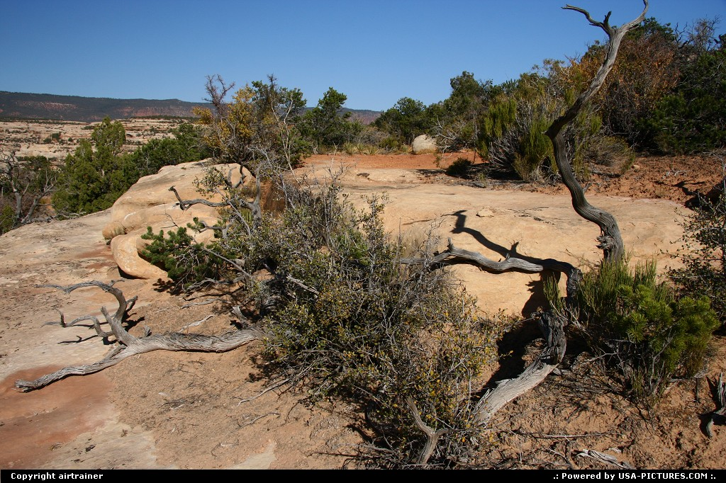 Picture by airtrainer:Not in a CityUtahnatural bridges