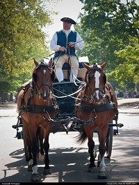 Photo by McMaggie | Williamsburg  horses, carriage, carriage driver, horse-drawn carriage, Colonial Williamsburg, Williamsburg, Virginia, summer, July, living history museum, living history, museum, historic site, Duke of Gloucester Street, colonial history, Virginia history
