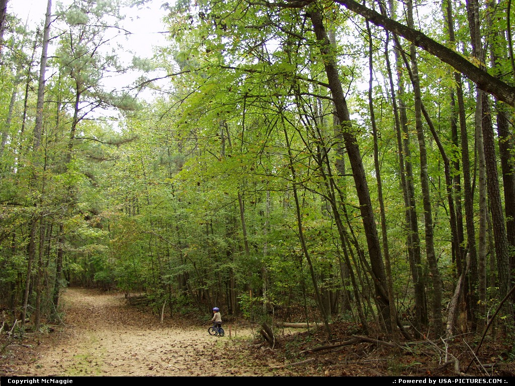 Picture by McMaggie:WilliamsburgVirginiaparks, bikes, biking, mountain biking, bicycling, trails, James City County, Williamsburg, Virginia, black history, history