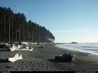 Photo by elki |  Olympic beach, rocks, forest