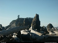 Ruby Beach: one of our favorites beaches on the coast. Look at the small stones formation on the middle on the photo