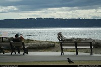 Photo by WestCoastSpirit | Mukilteo  park, sea, ferry, pacific