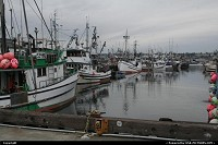 Photo by elki | Seattle  fish, fishermen, boat