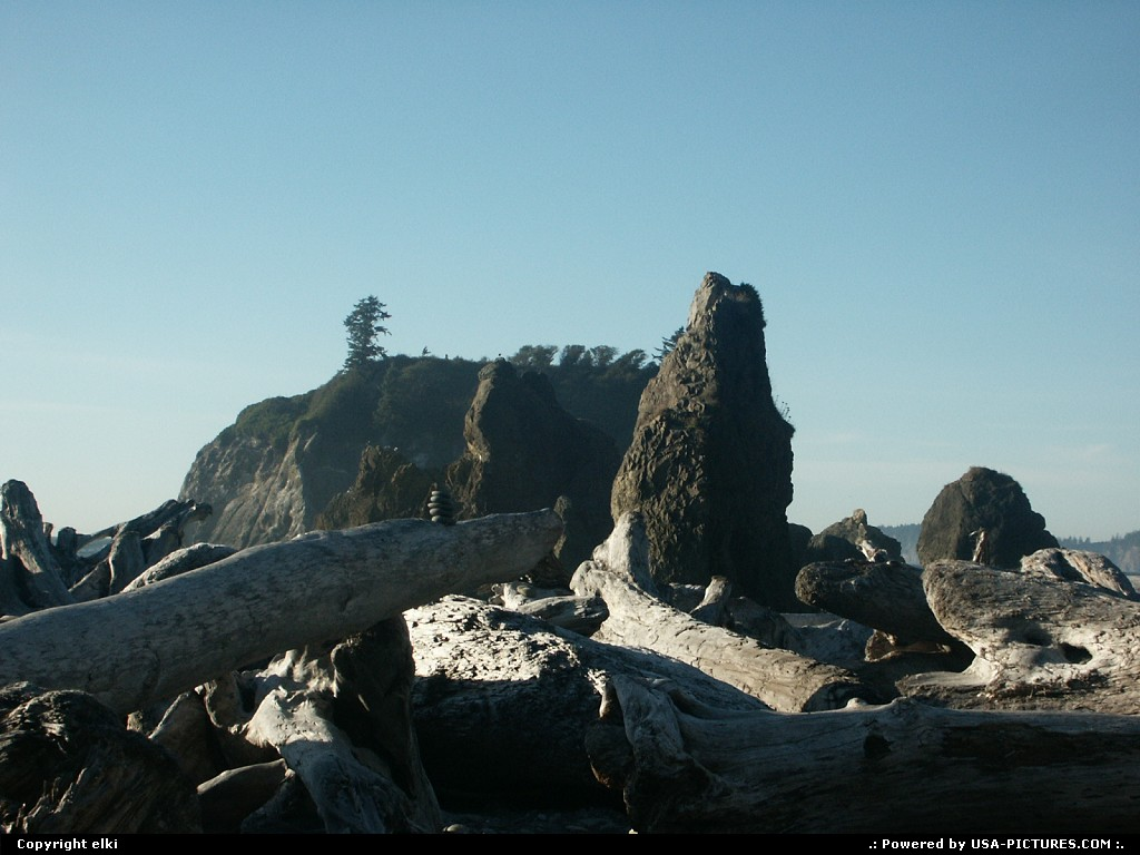 Picture by elki:  Washington Olympic Ruby Beach beach, rocks, forest