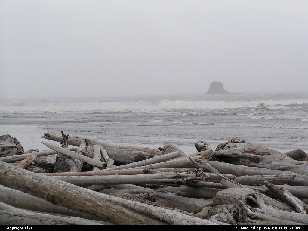 Picture by elki: Hors de la ville Washington   ruby beach