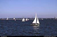 sailing on Michigan Lake