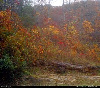 Photo by _Kyra_ | Clear Creek  mountain, rocks, autum, fall, trees