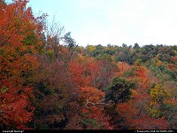 W-virginia, Wonderful blend of colors in the fall foliage of West Virginia